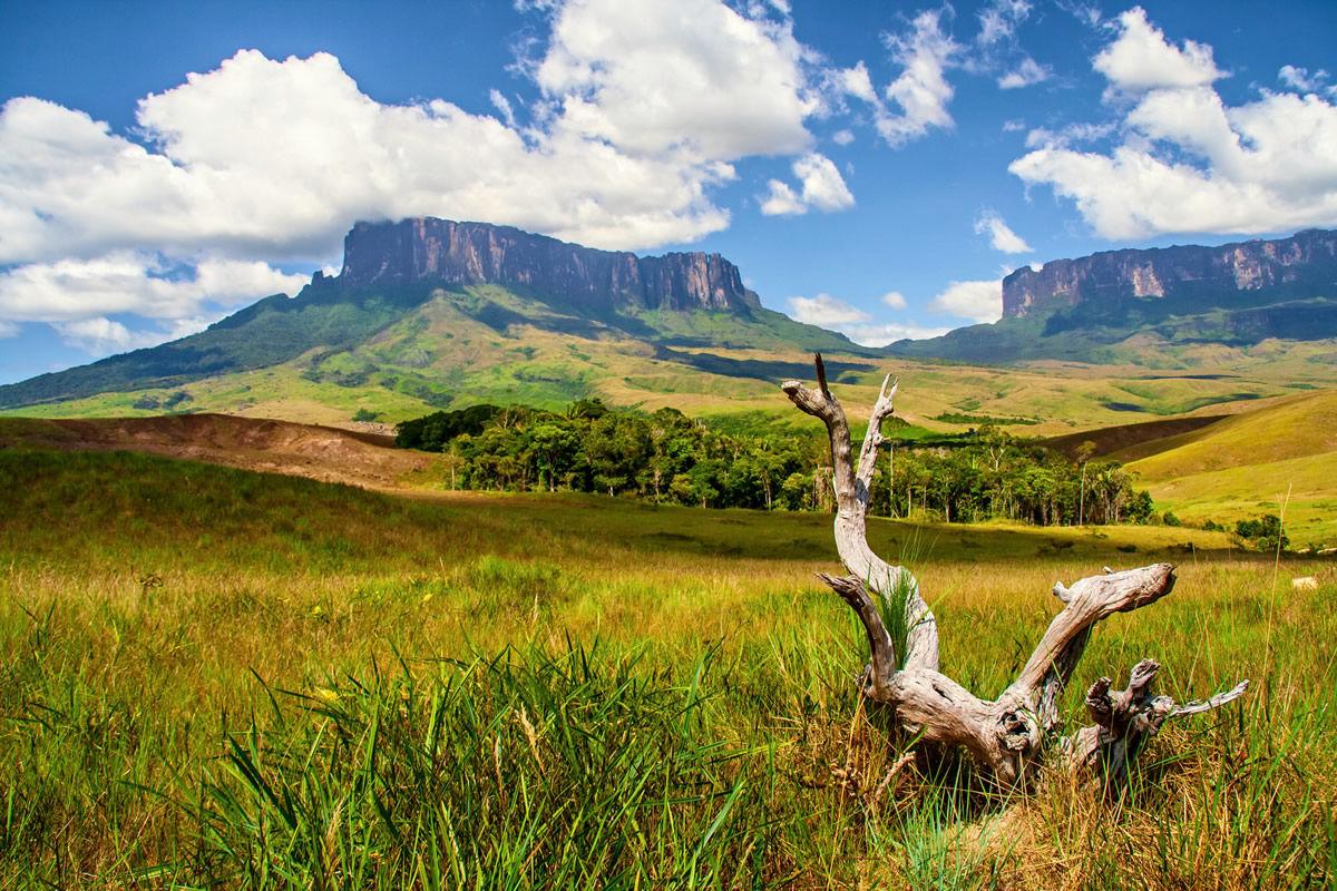 Weite Steppe in Tafelberg in Venezuela