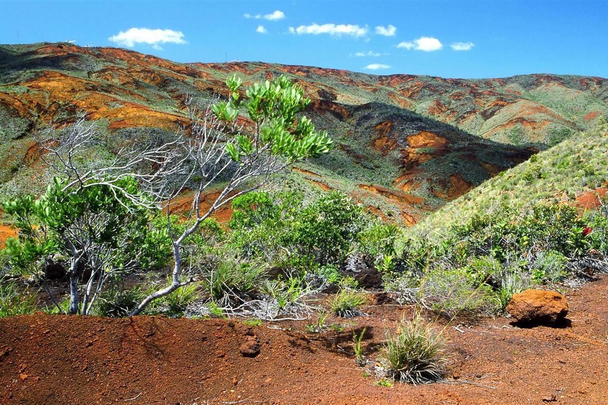 Landschaft im Süden von Neukaledonien