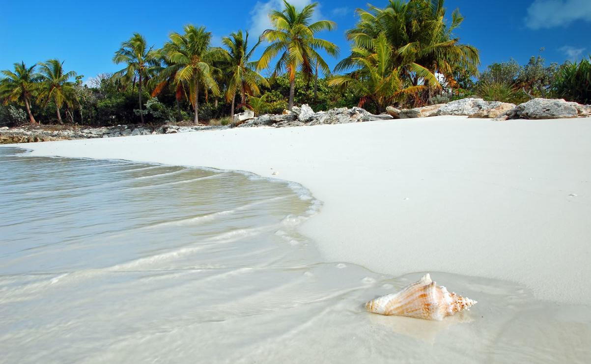 Paradiesischer Strand mit Palmen und azurblauem Wasser