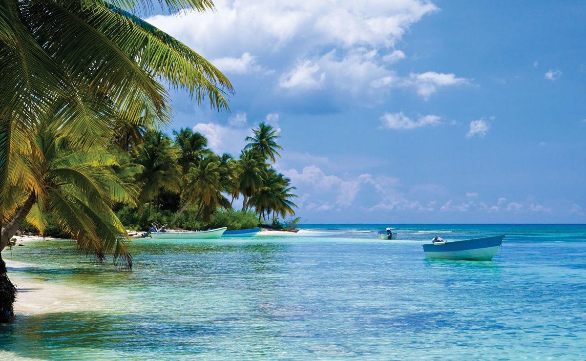 Palmen am Strand in Haiti