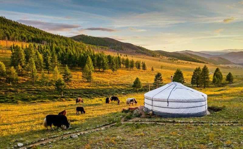 Beste Reisezeit und Klima für die Mongolei