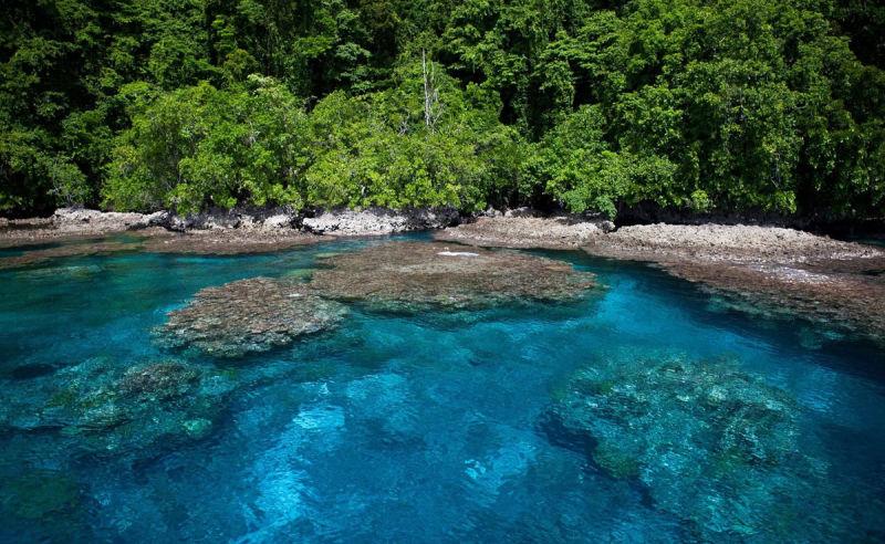 Korallenriff am Rand einer tropischen Insel auf den Salomonen
