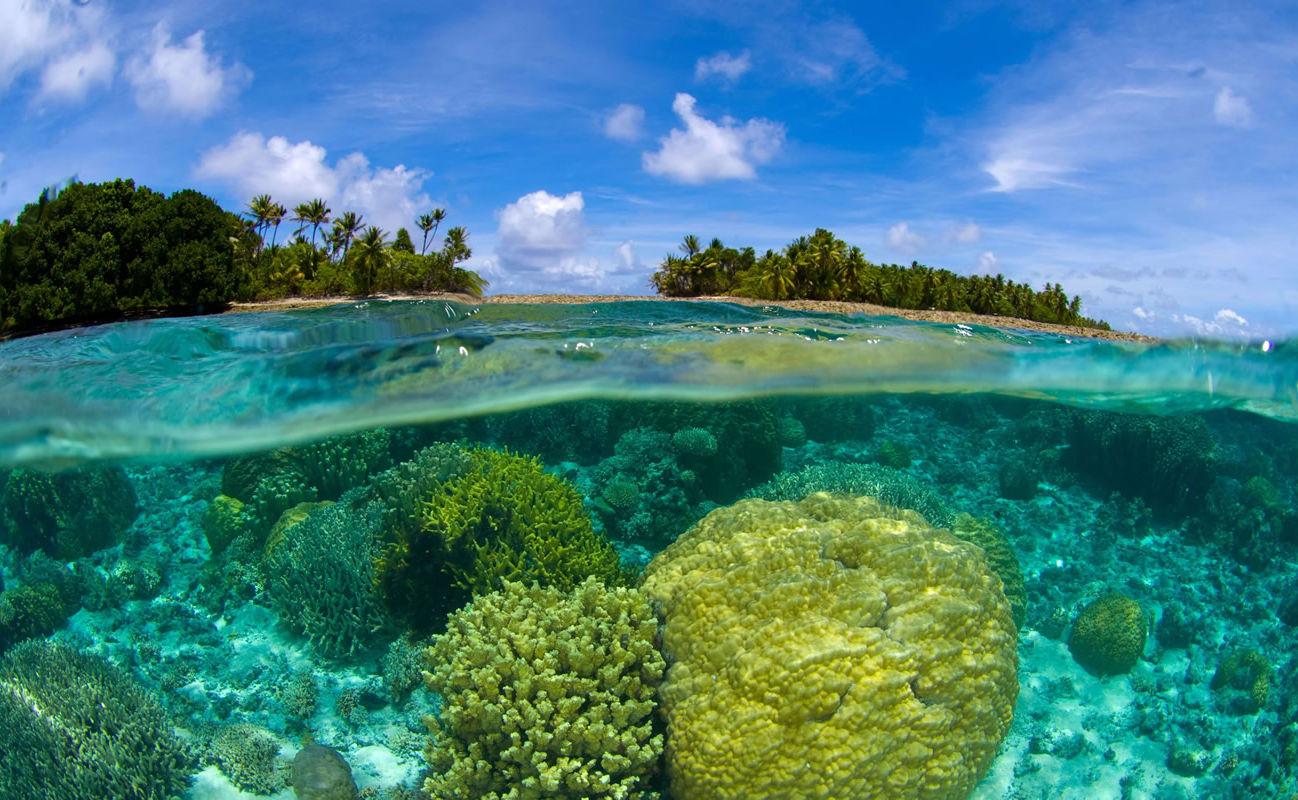 Korallenriff auf den Marschallinseln