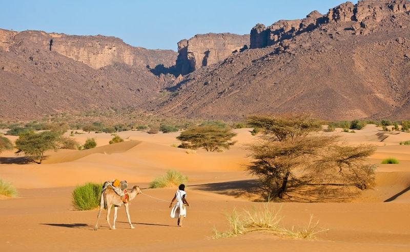Beduine mit Kamel in der Wüste von Mauretanien