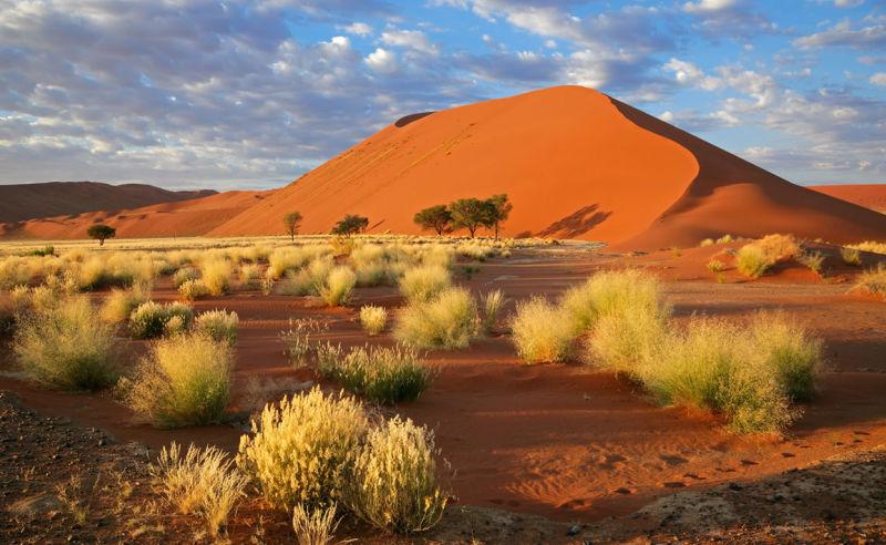 Landschaft bei Sossusvlei in Namibia